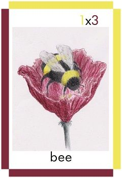 A card showing a bee